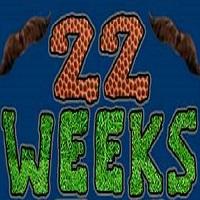 22-weeks-logofeat