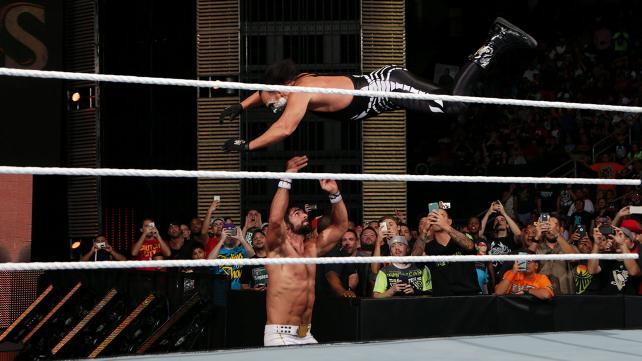 sting flying