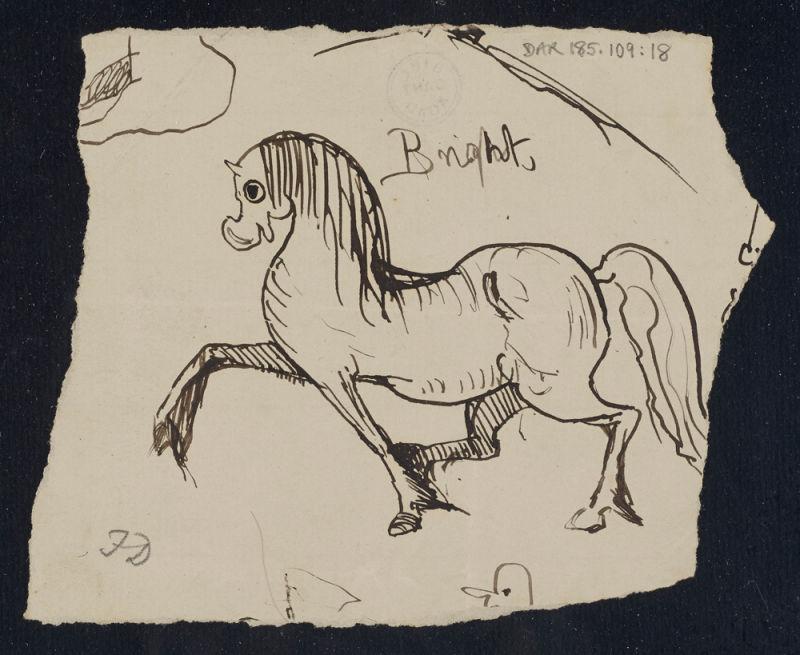 darwin-doodle