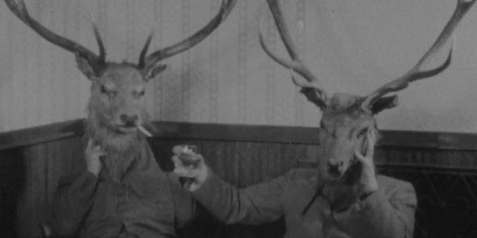deer-heads
