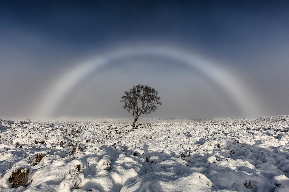 white-rainbow-fog